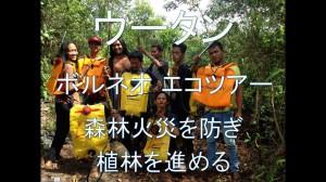 1.オランウータンの森の再生のために、森林火災を防ぎ、植林を進める「ウータン」