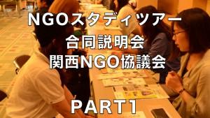 1. 関西NGO協議会 地域型ネットワークNGOと、その活動